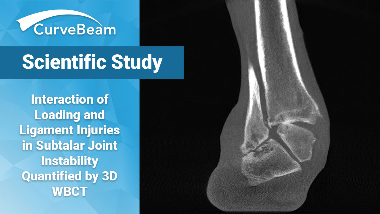 Interaction of Loading and Ligament Injuries in Subtalar Joint Ibstability Quantified by 3D WBCT
